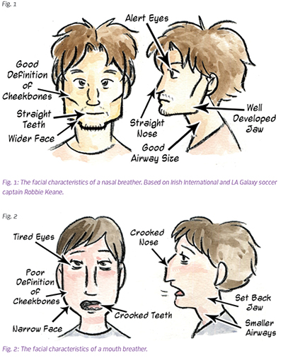 Difference between a nasal and mouth breather